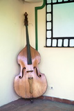 Double Bass in Restaurant  Vinales  Pinar Del Rio Province  Cuba  West Indies  Central America