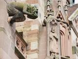 Gargoyles on Freiburg Cathedral  Freiburg  Baden-Wurttemberg  Germany  Europe  Europe