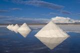 Salt Cones  Salar De Uyuni  Potosi  Bolivia  South America