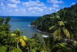 Pagua Bay in Dominica  West Indies  Caribbean  Central America
