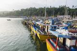 Mirisa  Southern Province  Sri Lanka  Indian Ocean  Asia