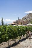 San Pedro De Yacochuya Winery in Cafayate  Salta Province  Argentina  South America