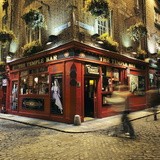 The Temple Bar Pub at Night  Temple Bar  Dublin  County Dublin  Republic of Ireland  Europe