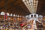 A Busy Gare Du Nord Station in Paris  France  Europe