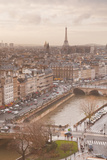 The City of Paris from Notre Dame Cathedral  Paris  France  Europe