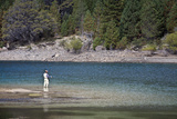 Fly Fishing at the Limay River in the Lake District  Patagonia  Argentina  South America
