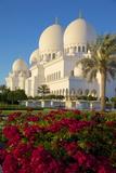 Sheikh Zayed Bin Sultan Al Nahyan Mosque  Abu Dhabi  United Arab Emirates  Middle East