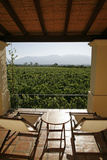 Cafayate Wine Resort  Cafayate  Salta Province  Argentina  South America