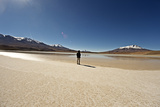 At the Edge of a Salt Lake High in the Bolivian Andes  Bolivia  South America