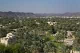 Nizwa  Oman  Middle East