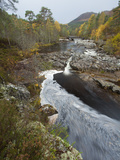 River Affric Flowing Through Silver Birch and Scots Pine Woodland in Autumn  Glen Affric  Scotland