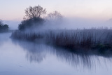 River Stour with Early Morning Mist and Frost  Near Wimborne Minster  Dorset  UK April 2012