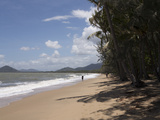 Beach at Palm Cove  Cairns  North Queensland  Australia  Pacific
