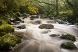 River Plym Flowing Fast Through Dewerstone Wood, Shaugh Prior, Dartmoor Np Devon, UK, October Papier Photo par Ross Hoddinott