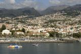 Funchal  Madeira  Portugal  Atlantic  Europe