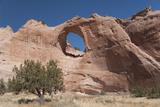 Window Rock Navajo Tribal Park  Arizona  United States of America  North America