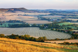Chalk Downland and Farmland Viewed from Wilmington Hill  South Downs Np  East Sussex  England  UK