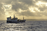 Fraserburgh Pelagic Trawler Fishing for Atlantic Mackerel (Scomber Scombrus) Shetland Isles  UK
