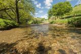 River Exe, Near Winsford, Exmoor National Park, Somerset, UK Papier Photo par Ross Hoddinott