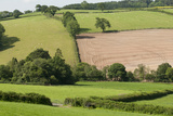 Intensivly Farmed and Grazed Farmland Next to Denmark Farm Conservation Centre  Lampeter  Wales  UK