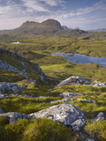 Bog Wetlands with Suilven Mountain at Dawn  Assynt Mountains  Highland  Scotland  UK  June