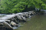 Tarr Steps  Medieval Clapper Bridge Crossing the River Barle  Exmoor National Park  Somerset  UK