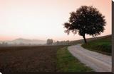 Toscana Valle No1