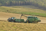 Harvesting Barley Crop in Late Summer  Scotland  UK