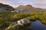 Suilven in Early Morning Light  Coigach - Assynt Swt  Sutherland  Highlands  Scotland  UK  June