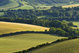 View of Downland and Arable Farmland from Wilmington Hill  South Downs Np  East Sussex  UK