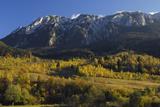Piatra Craiului Massif  Piatra Craiului Np  Transylvania  Southern Carpathian Mountains  Romania