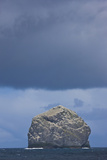 Stac Lee Home to a Northern Gannet (Morus Bassanus) Colony  St Kilda Archipelago  Scotland  UK