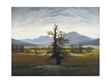 The Solitary Tree (Village Landscape in Morning Light)