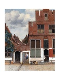 The Little Street (View of Houses in Delft)