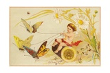 Butterflies Pulling Cherub on Thread Spool Chariot
