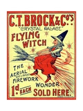 CT Brock and Co's Crystal Palace Fireworks Advertisement