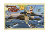 Greeting Card from Santa Catalina Island