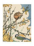 Illustration of Mouse and Bird Feeding on Branches