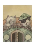 Cat Family Driving in Car
