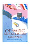 Olympic Bobsled Run Lake Placid Poster