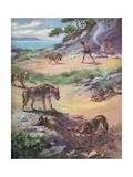 Jackals Stealing Food from Cavemen