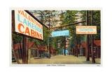 Postcard of Valentine's Lakeside Cabins