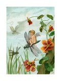 Winged Fairy Riding a Dragonfly Near Nasturtium Blooms