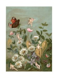 Fairies Frollicking Among Daisies and a Butterfly