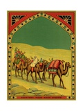 Czech English Cotton Label with Caravan of Camels