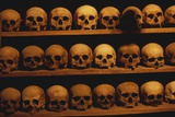 Shelves of Monk Skulls at Great Meteoron Ossuary