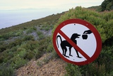 Sign Reminding Not to Feed the Baboons