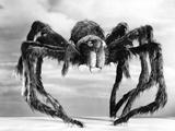 Giant Replica from the Movie Tarantula
