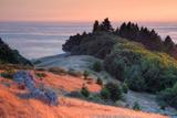 Sunset and Fog at Bolinas Ridge  Mount Tampalais