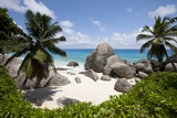 Tropical Beach  Seychelles